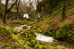 Gordale Beck below Janets Foss. Gordale Beck flows over Janets Foss waterfall near Malham in the Yorkshire Dales National Park Stock Images