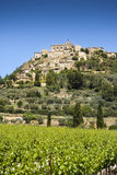 Gordes. Vineyard and hilltop village of Gordes in the Luberon, Vaucluse, Provence Royalty Free Stock Photos