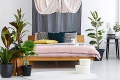 Gordijn in comfortabele slaapkamer stock fotografie