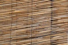 Gordijn van gele bruine bamboestok Stock Afbeelding