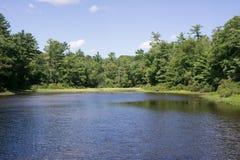 Gordon Pond in Norris Park, Norwell-doctorandus in de letteren royalty-vrije stock afbeeldingen
