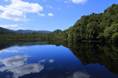 Gordon River Reflections Fotografia Stock