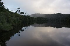 Gordon River Reflections in Tasmanige stock foto's