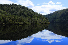 Gordon River Reflections Stock Image