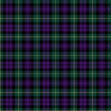 Gordon tartan. The Gordon family tartan is also indentified as a regimental sett Stock Image