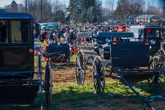 Amish Buggies at Sale. Gordonville, PA, USA - March 10, 2018: A large crowd gathers at the annual Lancaster County Mud Sale at the Gordonville Fire Company Stock Image