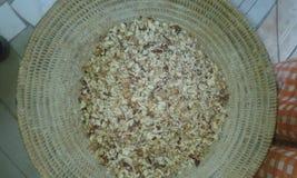 Gordura da palma Imagens de Stock