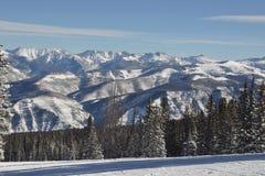 Gore Range em um Beaver Creek Colorado do dia do pó do PRISIONEIRO DE GUERRA do azulão-americano Imagem de Stock