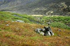 Gorge горы Стоковые Фотографии RF