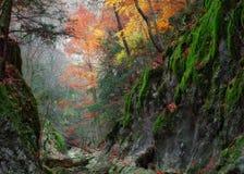 gorge Крыма каньона грандиозный Стоковые Фотографии RF