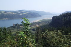 Gorge Рекы Колумбия Стоковая Фотография