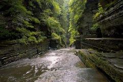 gorge Стоковая Фотография