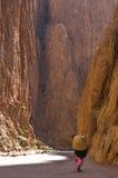 Gorge 2 de Todra Image stock