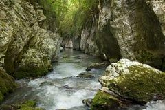 Gorge Photo stock