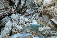 gorge Стоковые Изображения