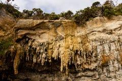 Gorge Ard Loch Большая пещера известняка на большей дороге океана Виктория, Австралия стоковые изображения