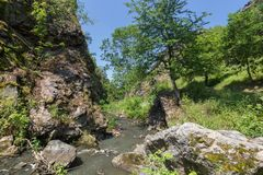 Free Gorge At The Divoka Sarka In Prague Stock Photography - 102057462