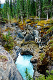Gorge at Athabasca Falls Stock Images