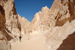 Gorge blanche en Egypte photos libres de droits