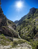 Gorge. Cares gorge, Picos de Europa Natural Park, Asturias, Spain Stock Photo