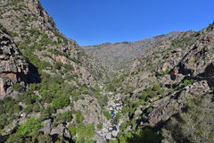 Gorge between the Corsican mountain ranges Stock Images