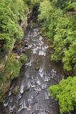 Gorge at Cuyahoga Falls Stock Photos