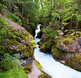Gorge d'Avalanch photo stock