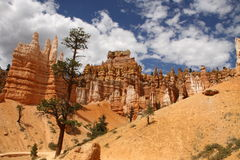 Gorge de Bryce Photo stock