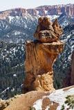 Gorge de Bryce, nationale. Stationnement, Utah Image stock