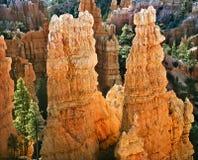 Gorge de Bryce, Utah Photos libres de droits