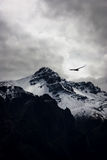 Gorge de Colca Image libre de droits