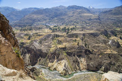 Gorge de Colca Photos libres de droits