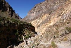 Gorge de Colca, Pérou image libre de droits