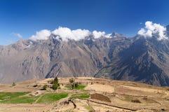 Gorge de Colca, Pérou Photographie stock libre de droits