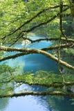 Gorge de Dakigaeri photo stock
