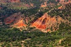 Gorge de Duro de Palo Images stock