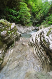 Gorge de fleuve de montagne image stock
