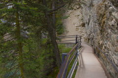 Gorge de Johnston Images stock