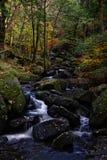 Gorge de Padley en automne photographie stock libre de droits