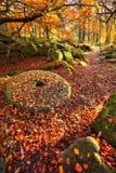Gorge de Padley pendant l'automne et un vieux whee de meule photos stock