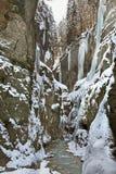 Gorge de Partnachklamm - de Partnach près de Garmisch-Partenkirchen bavaria l'allemagne photos libres de droits