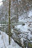 Gorge de Partnachklamm - de Partnach près de Garmisch-Partenkirchen bavaria l'allemagne photographie stock