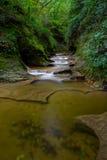 Gorge de roche Image stock