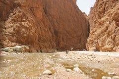 Gorge de Todgha Photos libres de droits