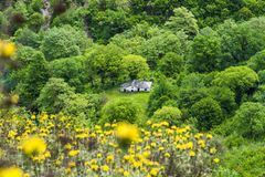 Gorge de Vikos, Grèce images stock