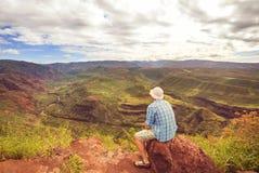 Gorge de Waimea Photographie stock