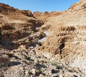 Gorge in desert near the Dead Sea Royalty Free Stock Photography