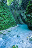 Gorge - Emerald creek in narrow canyon Stock Photos