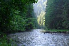 Gorge et fleuve Photographie stock libre de droits