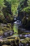 Gorge féerique Betws-y-mixte, Pays de Galles image libre de droits